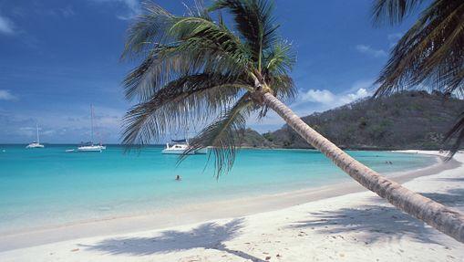 Dream Grenadines Premium