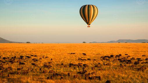 Safari luxe & vol en Montgolfière en Tanzanie