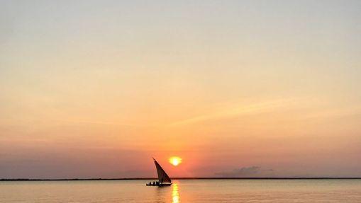 Les Grands Parcs de Tanzanie & Détente à Zanzibar