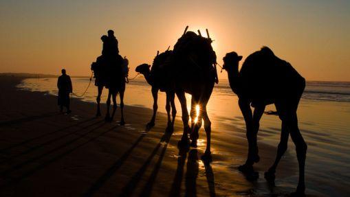 Trek sur la côte Atlantique au Sud d'Essaouira