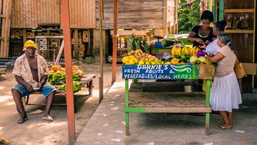 Croisière Lipari 41 Grenadines