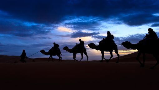 Transhumance du désert auprès des nomades berbères