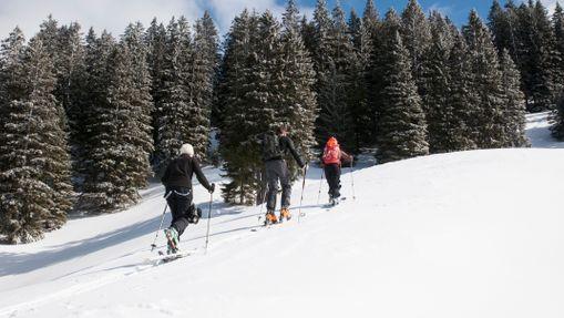 Initiation au ski de randonnée au Col d'Izoard