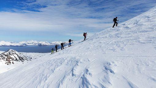 Ski de randonnée dans les Alpes de Lyngen