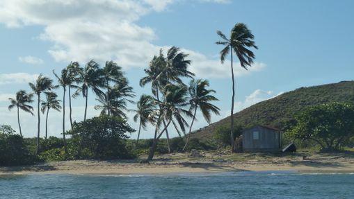Croisière en catamaran Iles Vierges britanniques-6