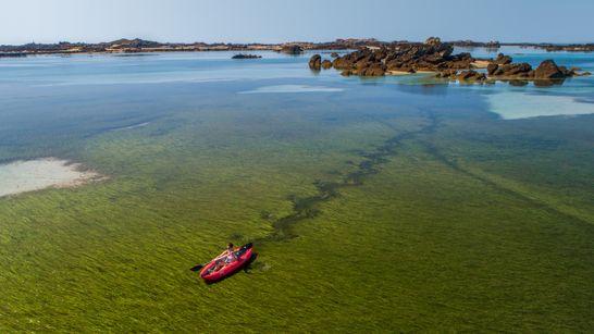 Rando kayak et navigation a bord d'un grand voiler