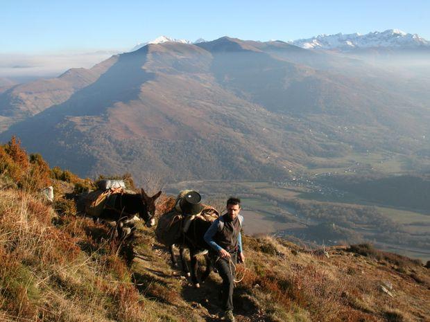 Randonnée itinérante avec des ânes-4
