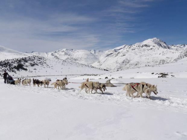 Séjour raquettes & chiens de traîneaux en Ariège-13