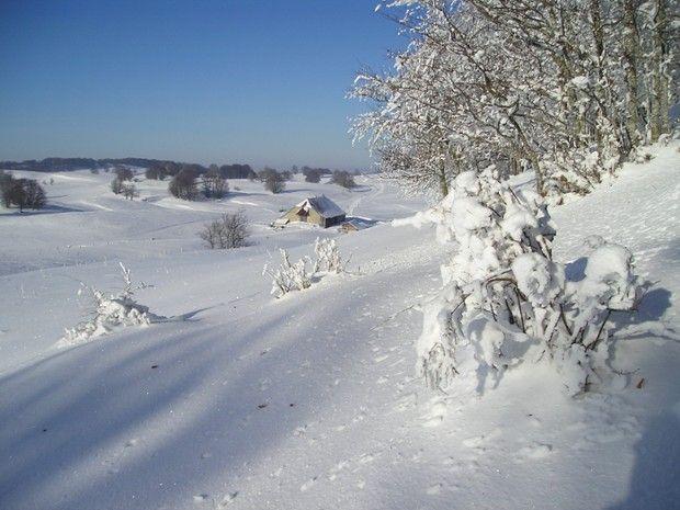 Plateau du Jura enneigé