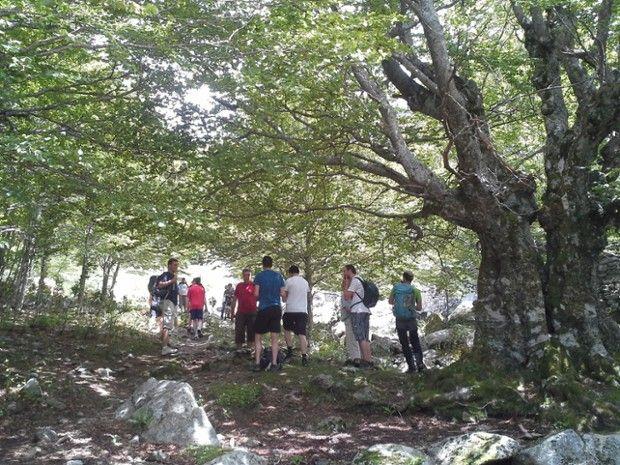 Rando découverte: Flore, montagnes, bergeries... -3