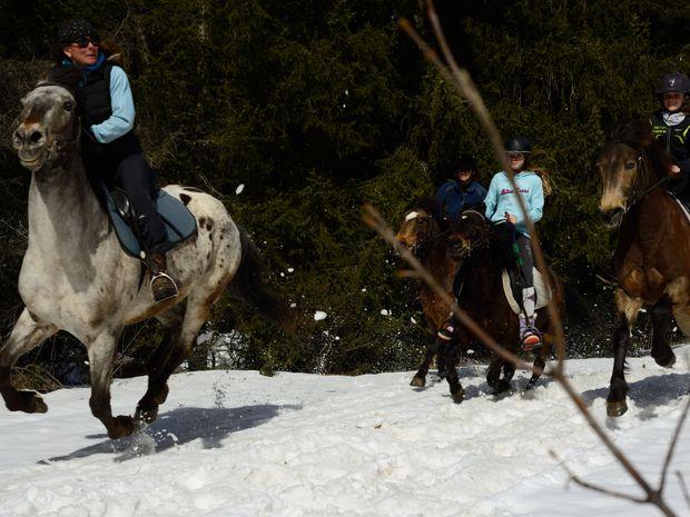 Promenade à cheval dans la neige de Méribel -2