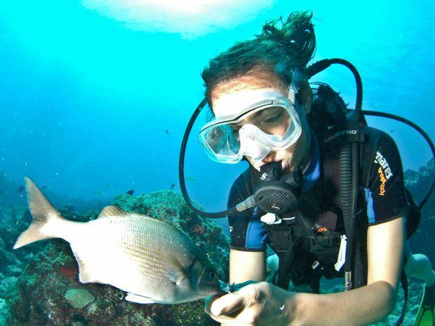 Baptême de plongée sous-marine-1