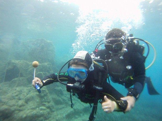 Baptême et plongée découverte à Fréjus-1