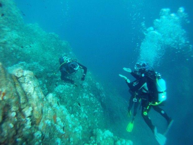 Formation plongeur Niveau 1 à Fréjus-1