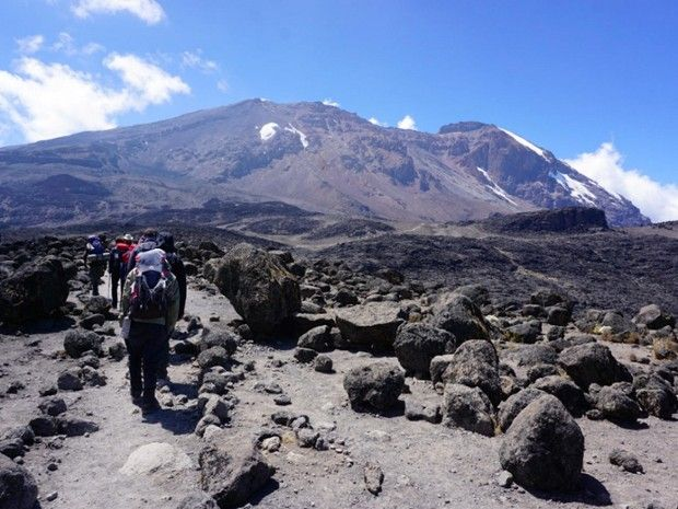 Ascension du Kilimandjaro - Marangu Route-1