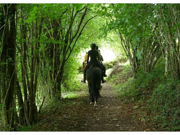 Week-end d'aventures pyrénéennes à cheval-1