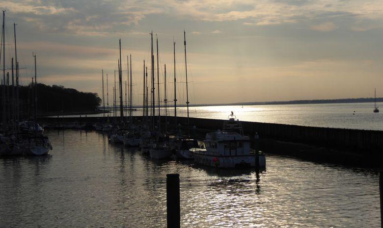 Ile de Wight et Sud Angleterre -4