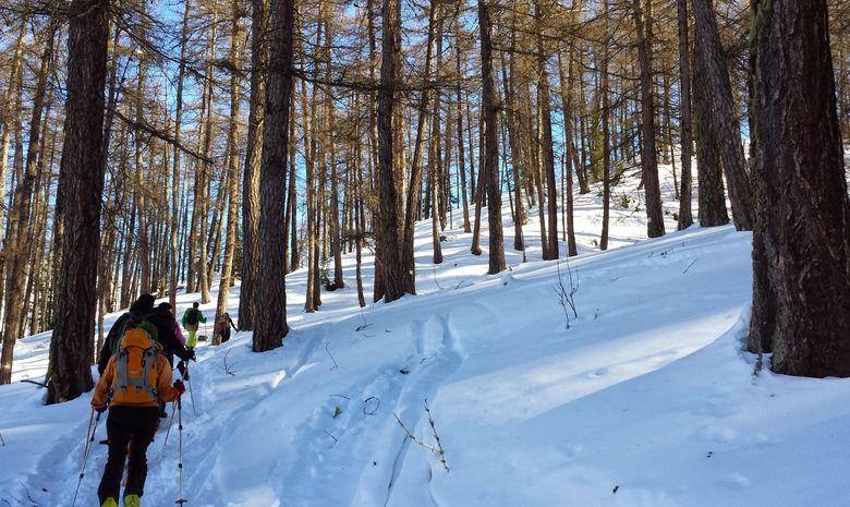 Week end raquettes dans les Alpes du Sud-2