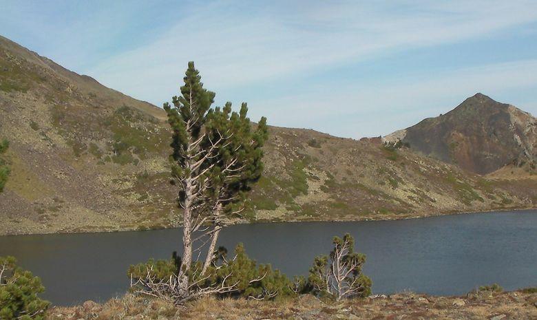 Stage perfectionnement - Trail en altitude-8