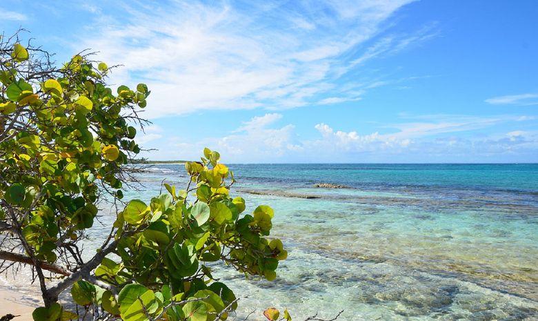 Tour des Îles de la Guadeloupe en catamaran -11