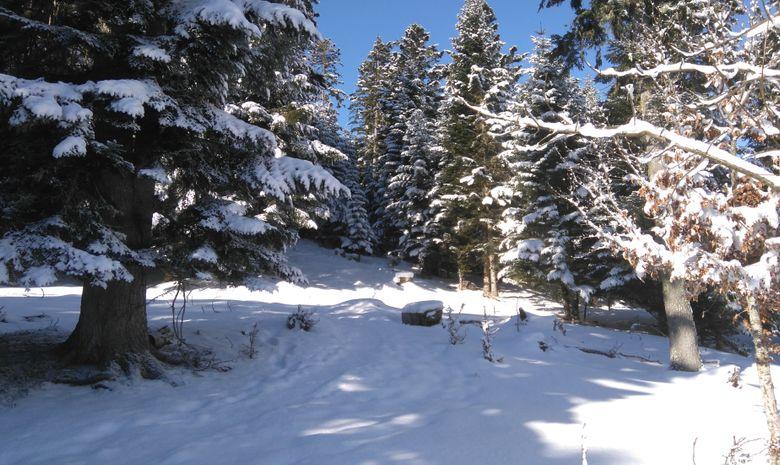 Raquettes au sommet en Vallée d'Aure-4