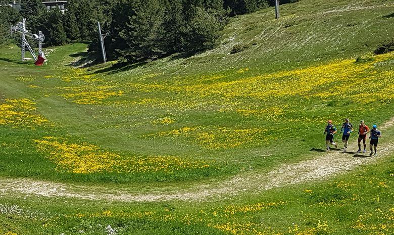 Courir sur les pentes du Mont Ventoux-3
