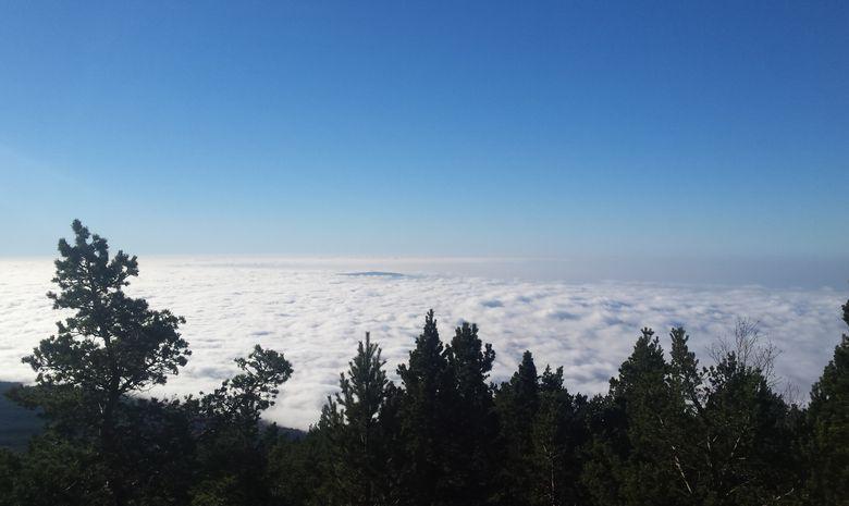 Courir sur les pentes du Mont Ventoux-8