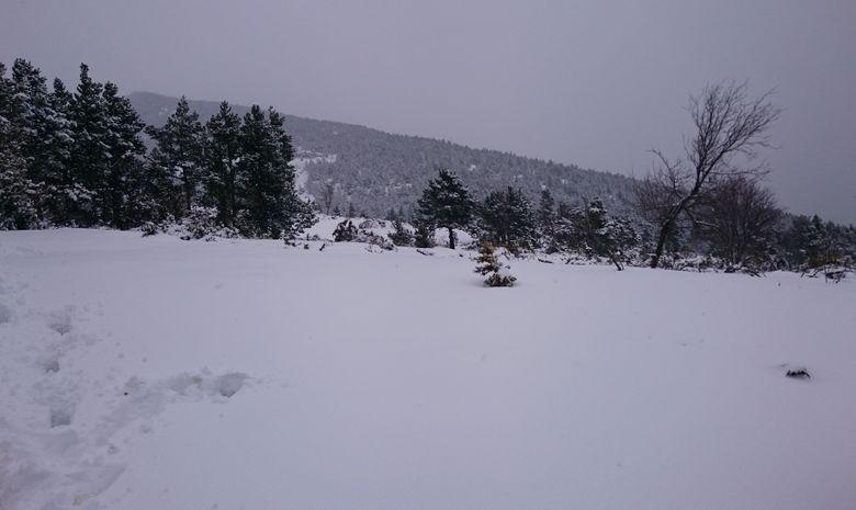 Journée Trail au Mont Ventoux-10