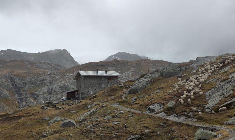 Découverte des cascades, lacs et glacier du Ruitor-9