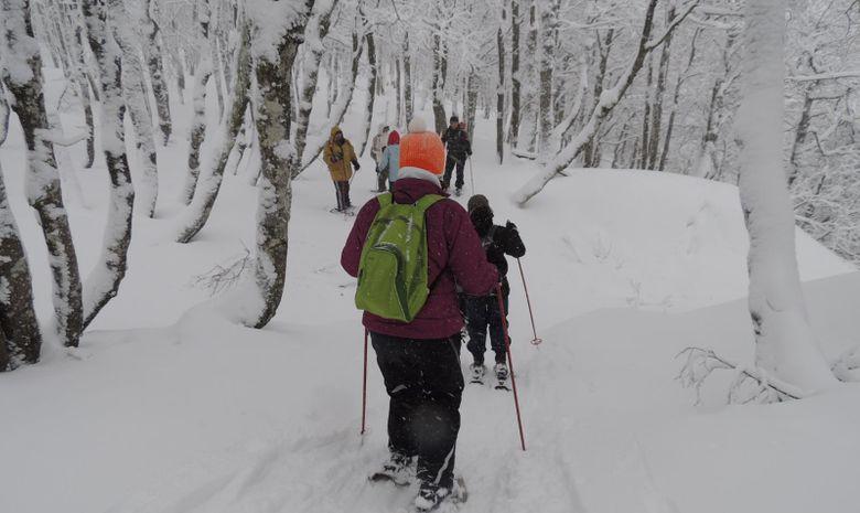 Séminaire : découverte de la montagne enneigée-3