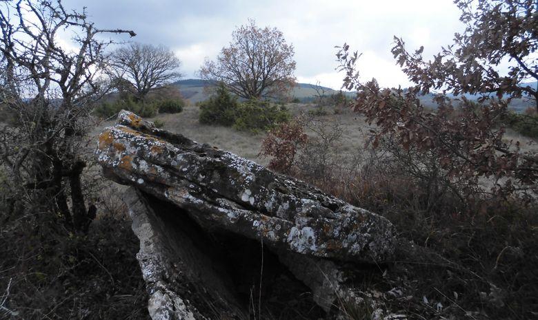 Séjour découverte du plateau du Lévézou - Aveyron-13