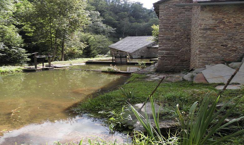 Séjour découverte du plateau du Lévézou - Aveyron-14