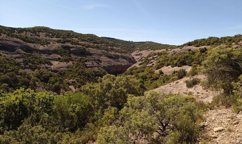 Canyoning en sierra de Guara-10