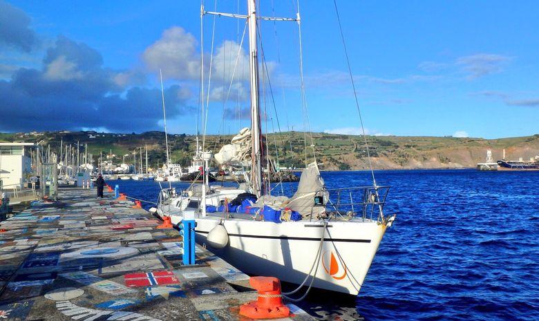 Albatros en escale à Horta aux Açores