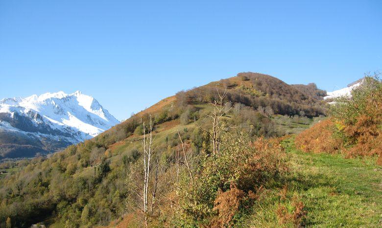 Stage Trail Pyrénées - Découverte-5