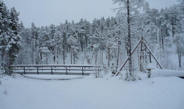 Séjour Multi-activités dans le nord de la Finlande-6
