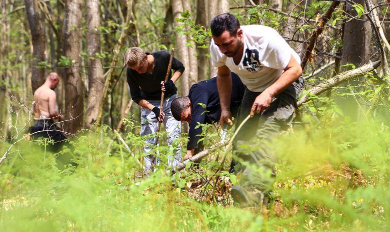 Stage de survie en forêt près de Toulouse-12