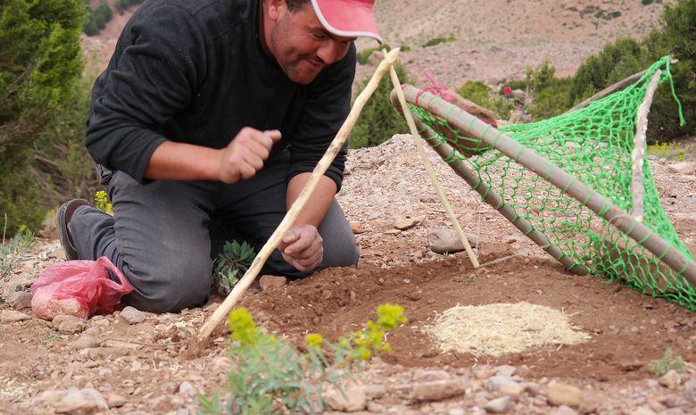 Trek et survie dans le Haut-Atlas marocain-14