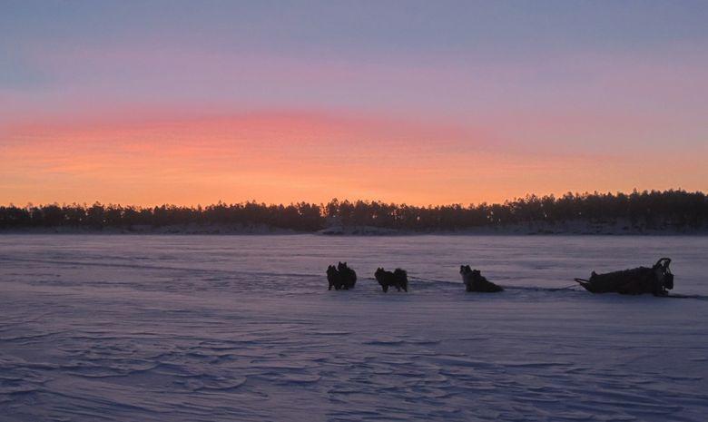 Raid en chien de traineau sur le lac Inari-3