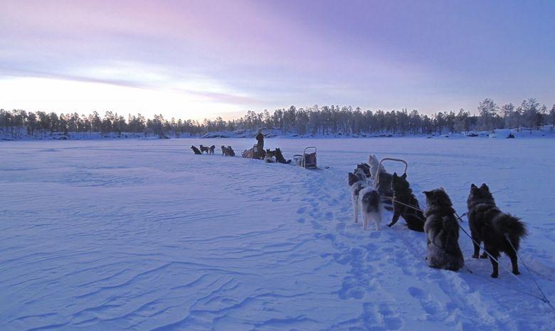 Raid en chien de traineau sur le lac Inari-4