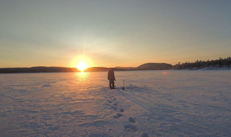 Raid en chien de traineau sur le lac Inari-1