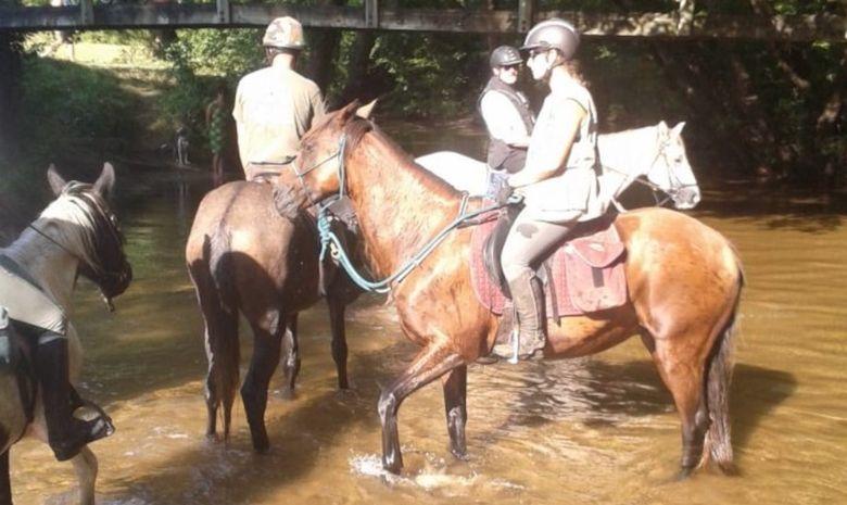 Randonnée découverte des Gorges du Ciron à cheval -5