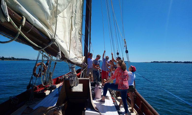 Croisière voilier traditionnel île de Bretagne sud-1