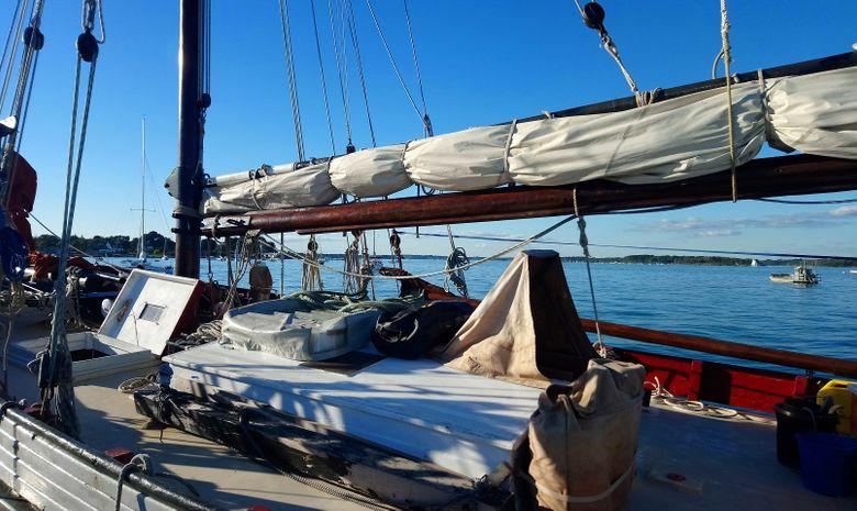Croisière voilier traditionnel île de Bretagne sud-9