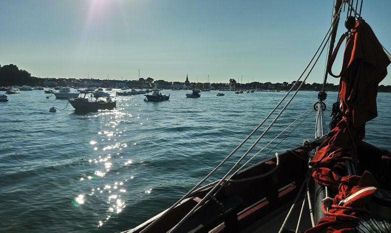 Croisière voilier traditionnel île de Bretagne sud-11