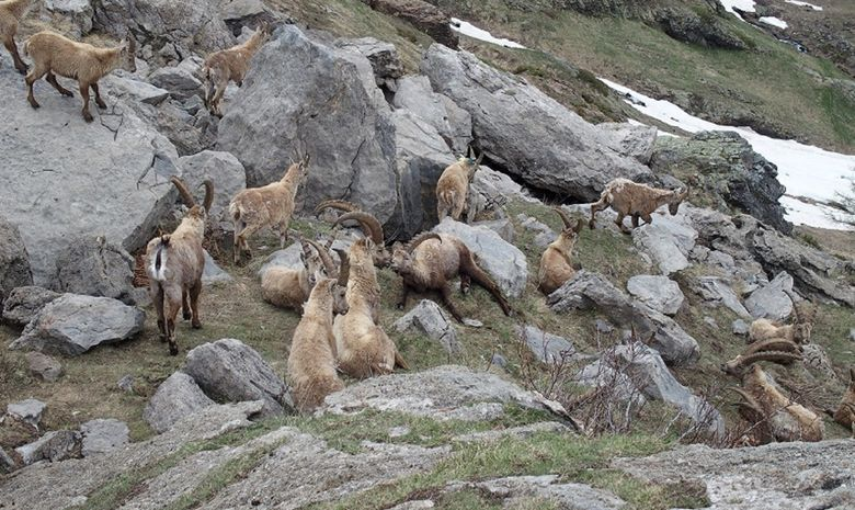Week-end de randonnée dans les Hautes-Alpes