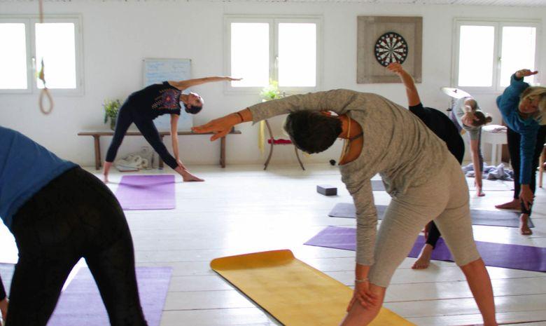 Yoga au coeur de la Forêt de Fontainebleau -5