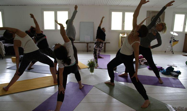 Yoga au coeur de la Forêt de Fontainebleau -7
