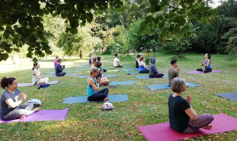 Stage yoga & naturopathie en forêt à Fontainebleau