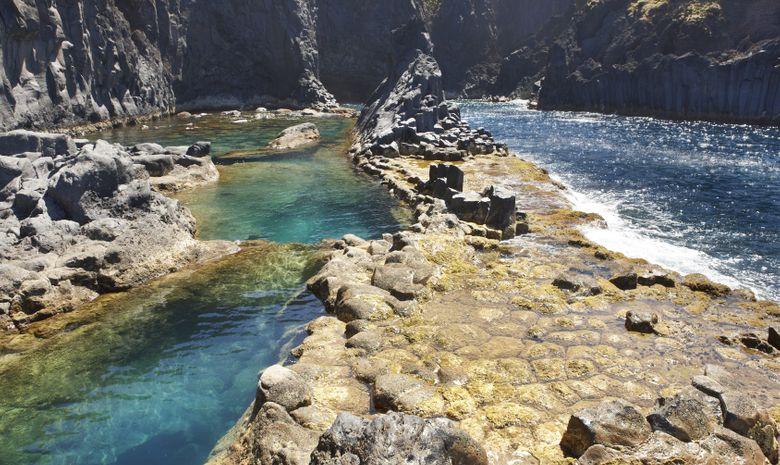 Voile-rando & cétacés aux Açores-13